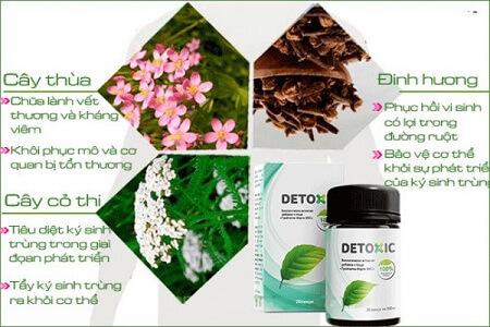 Detoxic thành phần