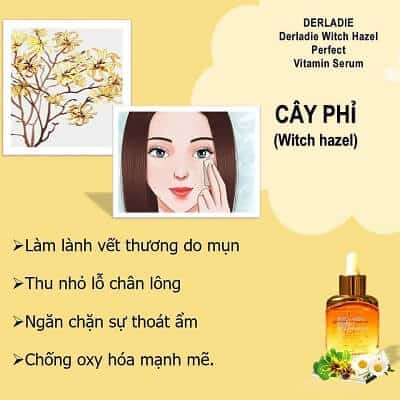 Công dụng Serum Derladie Witch Hazel Perfect Vitamin